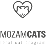 mozacats-3